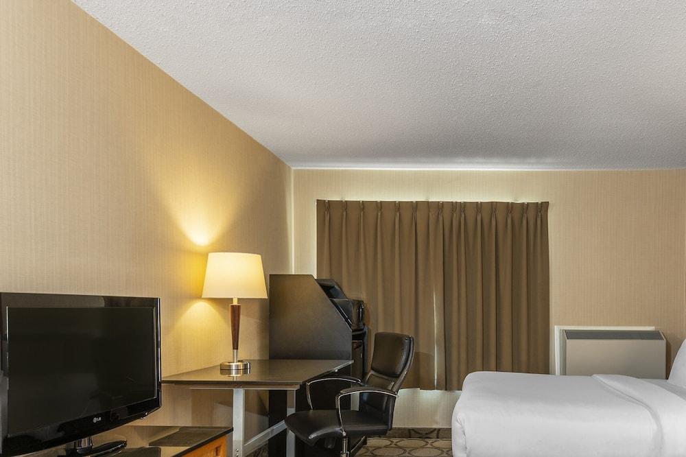 Business szoba, nemdohányzó (1 Queen Bed, Drive-Up) - Vendégszoba