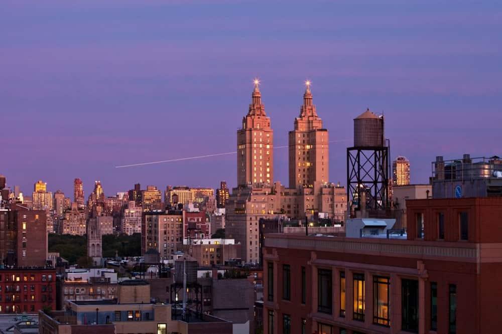 Loft with Terrace - City View