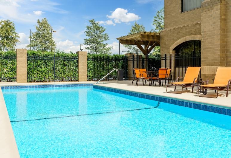 Holiday Inn Charlotte University Executive Park, Charlotte, Pool