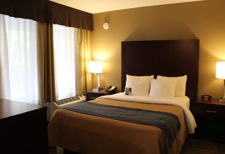 Comfort Inn & Suites Sea-Tac Airport, SeaTac