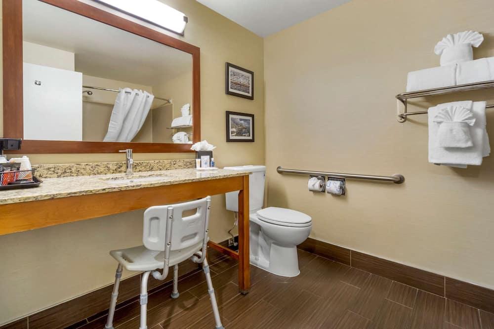 غرفة عادية - سرير ملكي - تجهيزات لذوي الاحتياجات الخاصة - لغير المدخنين - حمّام