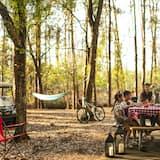 Area per barbecue/picnic