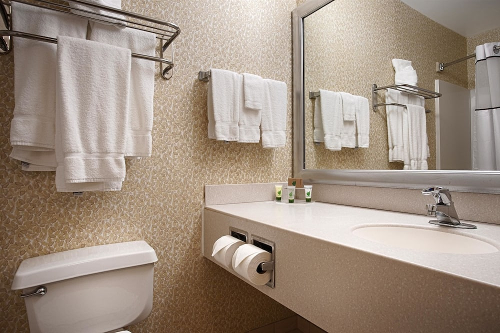 Standard Room, 1 Katil Raja (King), Non Smoking, Refrigerator & Microwave - Bilik mandi