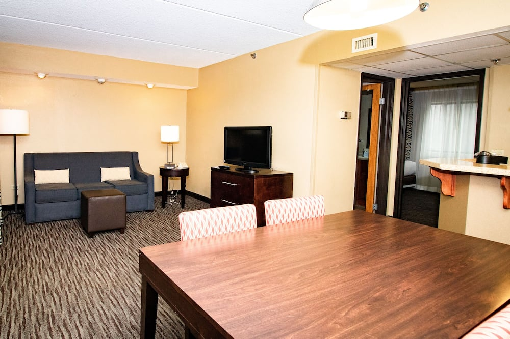 Sviitti, 1 suuri parisänky ja vuodesohva (Wet Bar, Living Room) - Oleskelualue