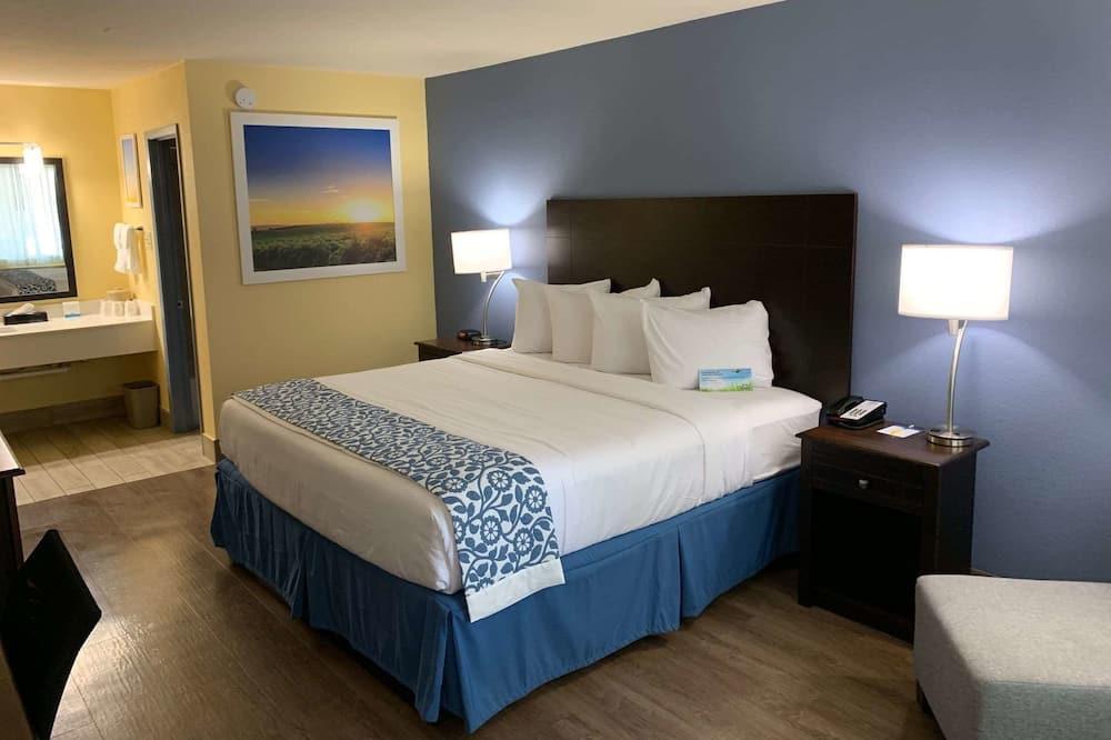 חדר, מיטה זוגית, נגישות לנכים, למעשנים (Mobility/Hearing, Tub w/ Grab Bars) - חדר אורחים
