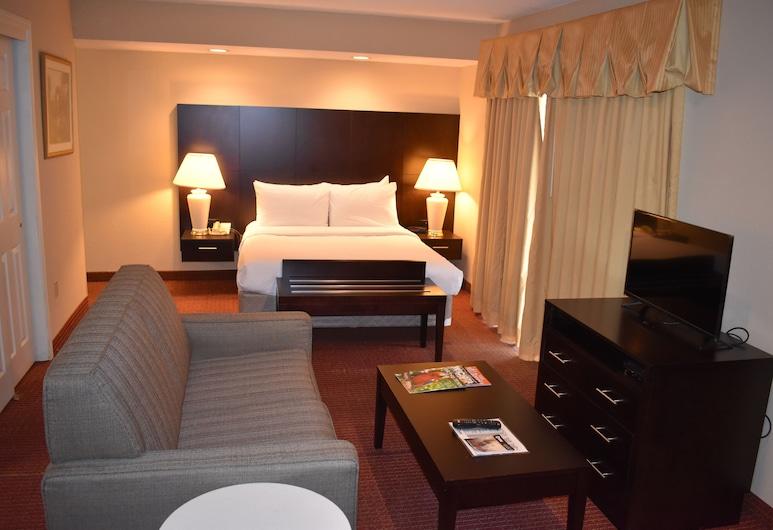Hawthorn Suites by Wyndham Wichita East, Wichita, Suite estudio, 1 cama de matrimonio grande, no fumadores, Habitación