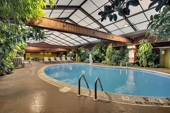 伊利莎白敦溫菲爾德套房飯店的相片