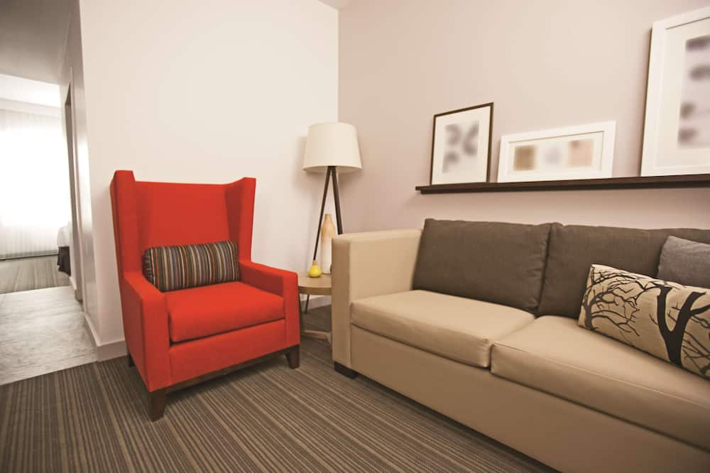 Suite, 1 King Bed with Sofa bed, Non Smoking (1 bedroom) - Living Area