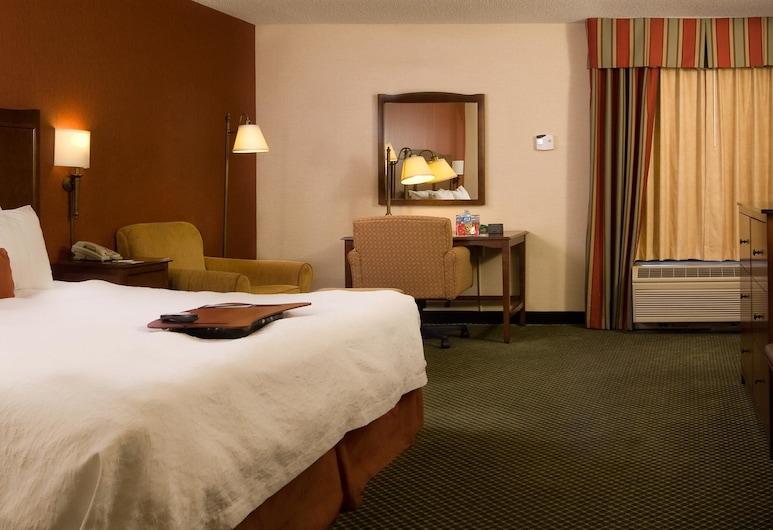 Hampton Inn Atlanta - North Druid Hills, Atlanta, Viesu numurs