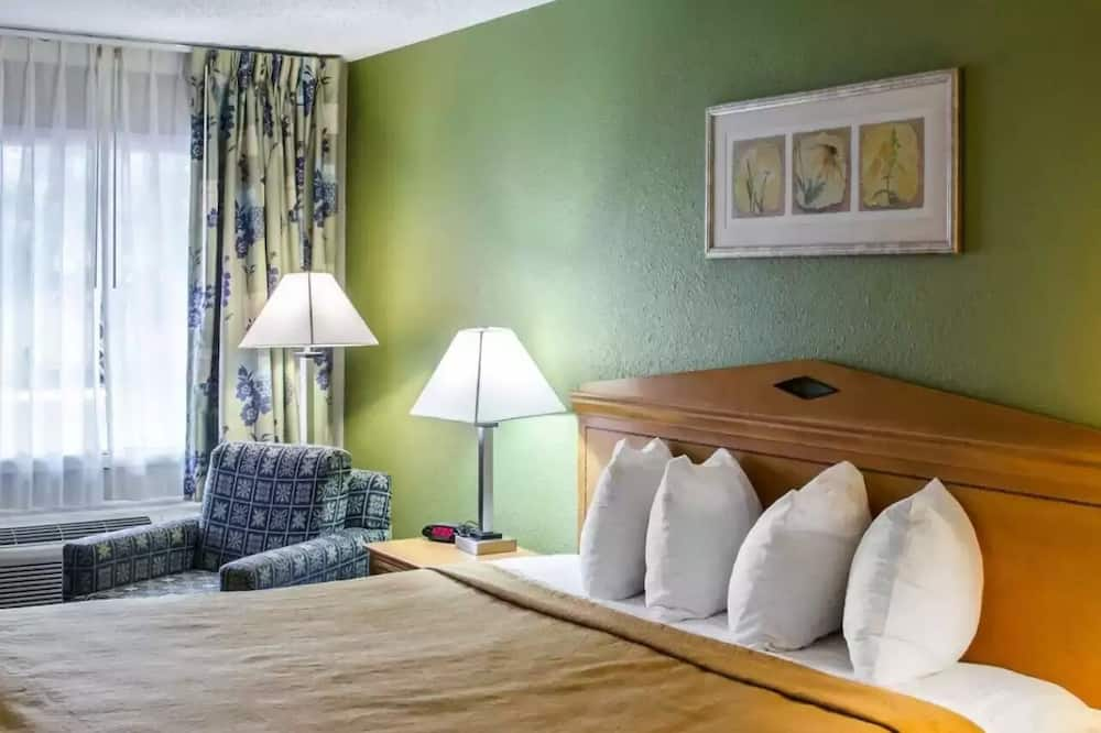 Habitación, 1 cama King size, con acceso para silla de ruedas, para no fumadores - Habitación