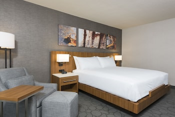 Picture of Delta Hotels by Marriott Grand Rapids Airport in Grand Rapids