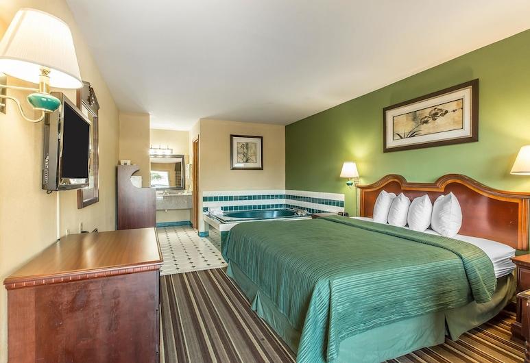 Quality Inn & Suites Macon North, Makonas, Svečių kambarys