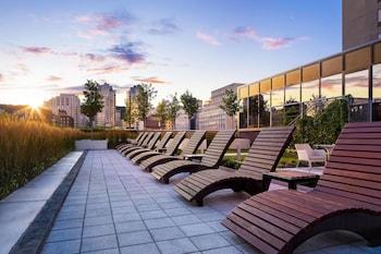蒙特婁蒙特婁喜來登中心飯店的相片