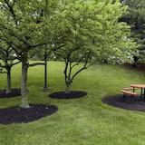 Teren na przyjęcie z grillem/piknik