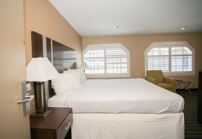 Travel Inn, Sunnyvale, Chambre, 1 très grand lit, Chambre