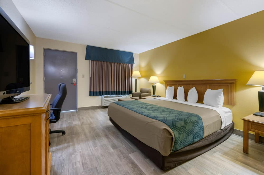 Room, 1 King Bed, Accessible, Smoking (Roll in shower) - Guest Room