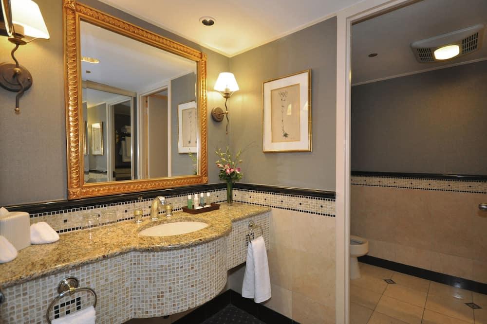 Pagerinto tipo kambarys, 2 standartinės dvigulės lovos, su patogumais neįgaliesiems - Vonios kambarys