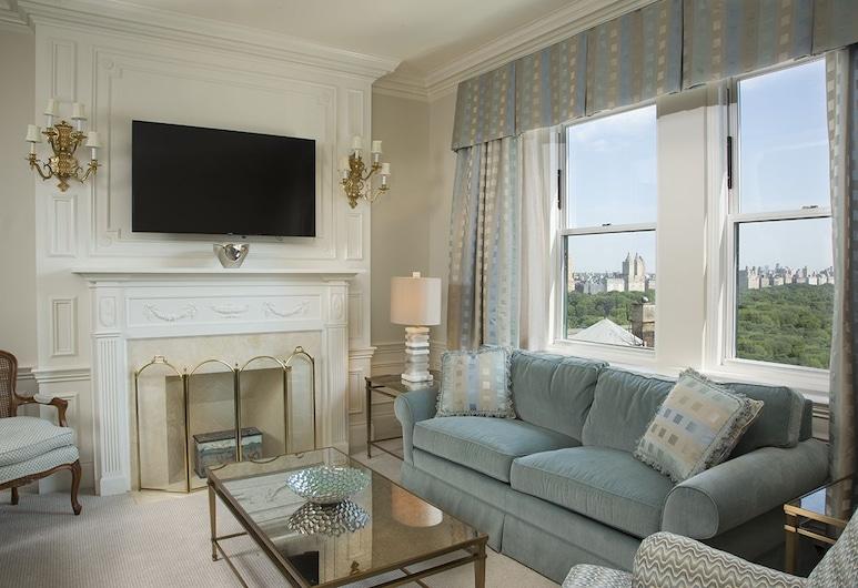 The Sherry Netherland, Νέα Υόρκη, Σουίτα, Θέα στην Πόλη, Δωμάτιο επισκεπτών