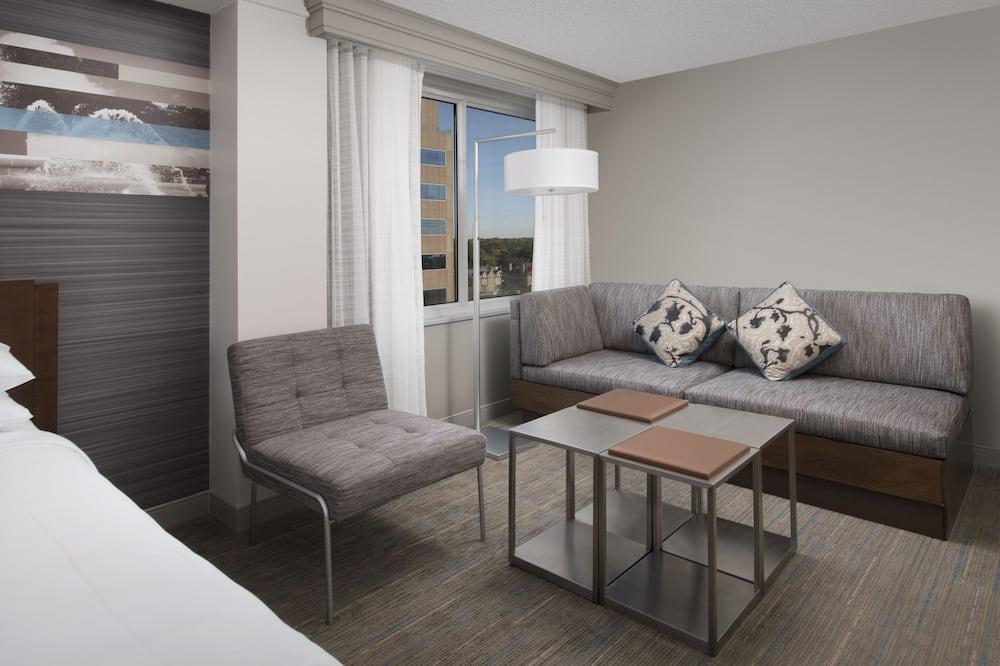 Kambarys verslo klientams, 2 didelės dvigulės lovos, Nerūkantiesiems - Svetainės zona