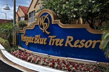 Fotografia hotela (Westgate Blue Tree Resort in Lake Buena Vista) v meste Orlando