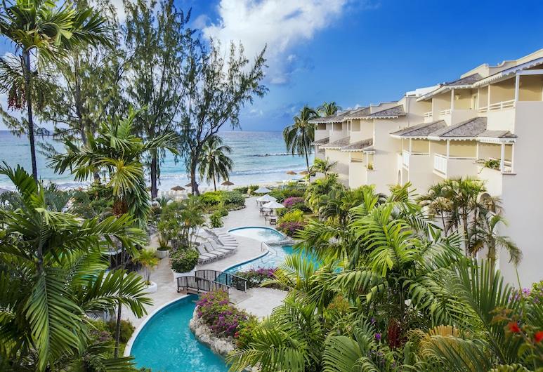 Bougainvillea Barbados, Maxwell, Välisilme