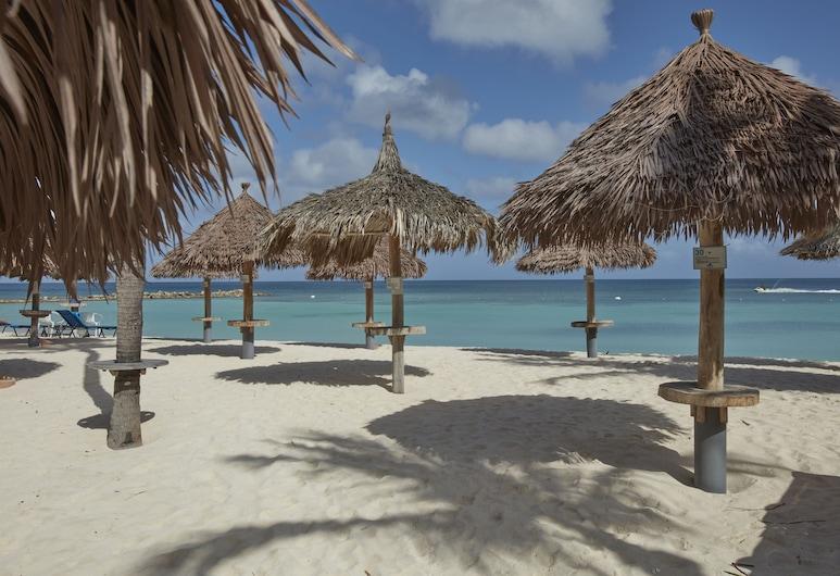 Divi Aruba Phoenix Beach Resort, Noord, Playa