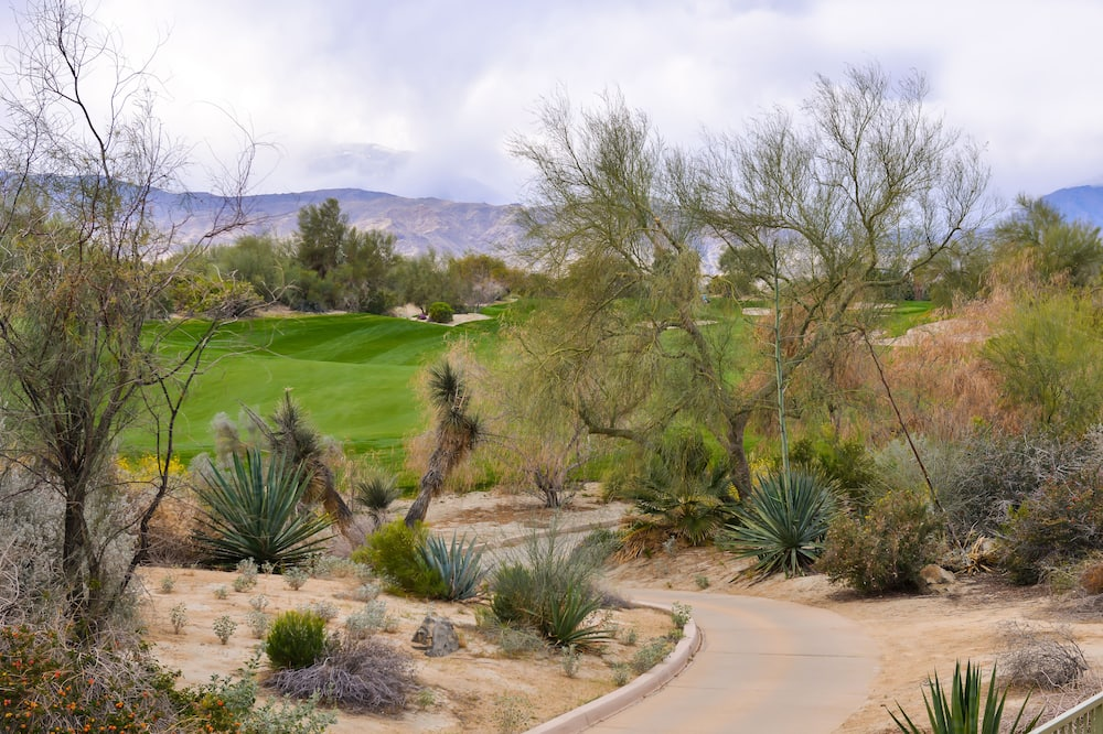 Suite, 2 Bedrooms, Balcony, Golf View - Mountain View