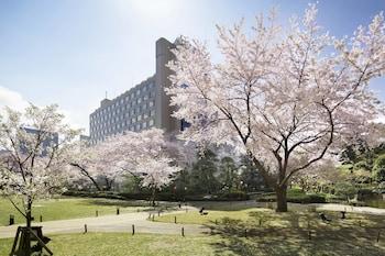 東京高輪皇家王子大飯店櫻花塔東京的相片
