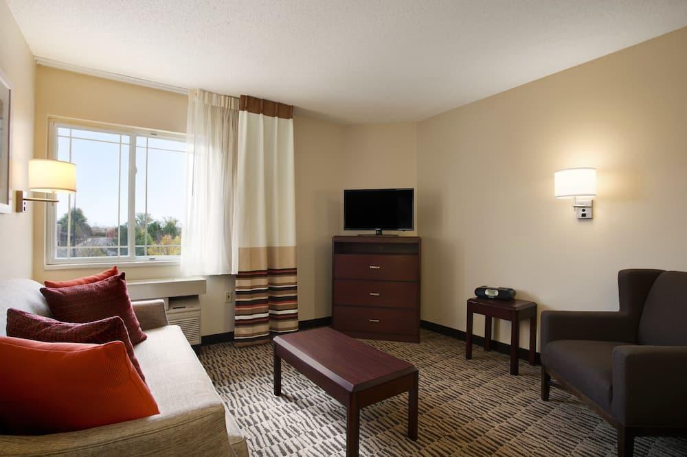 スイート 禁煙 (One-Bedroom Suite) - リビング ルーム