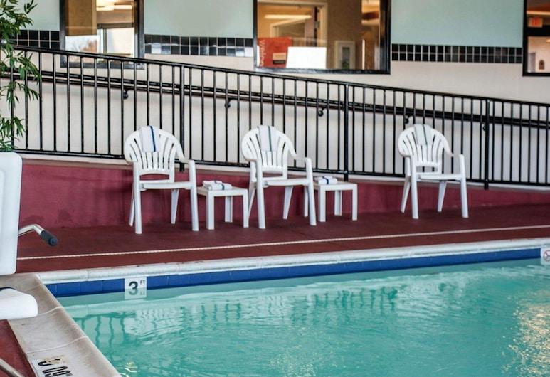 Quality Inn & Suites, East St. Louis, Sundlaug