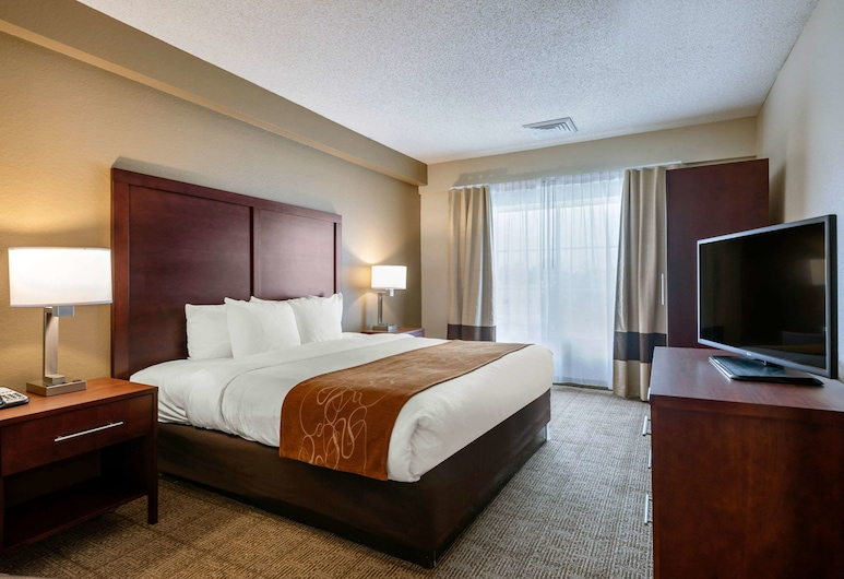 Comfort Suites Downtown, Orlando, Suite, 1 King Bed, Non Smoking, Guest Room