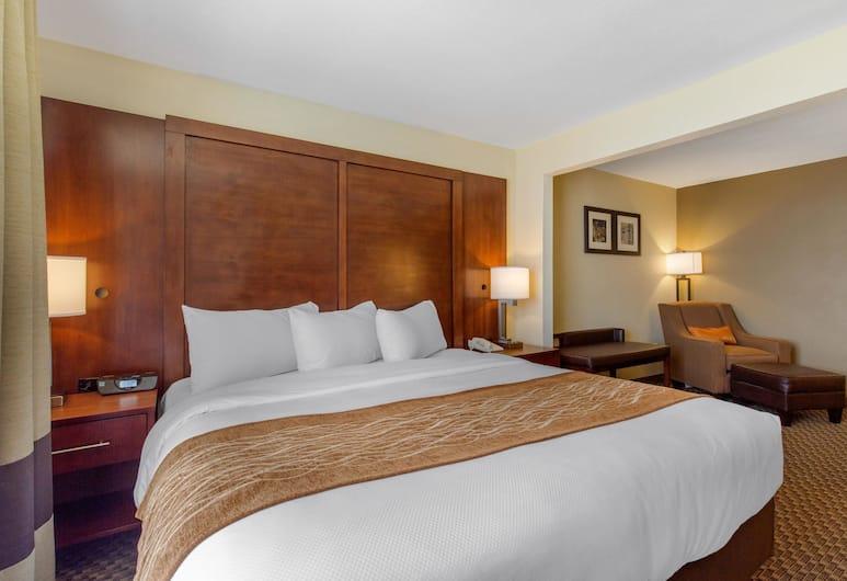 Comfort Inn & Suites SW Houston Sugarland, Houston, Standardværelse - 1 kingsize-seng - ikke-ryger, Værelse