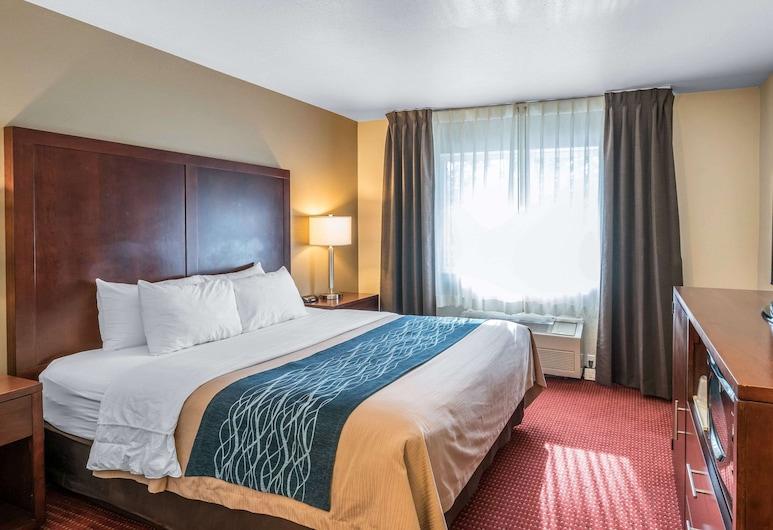 Comfort Inn Lacey - Olympia, Лейсі, Стандартний номер, 1 ліжко «квін-сайз», для некурців, Номер