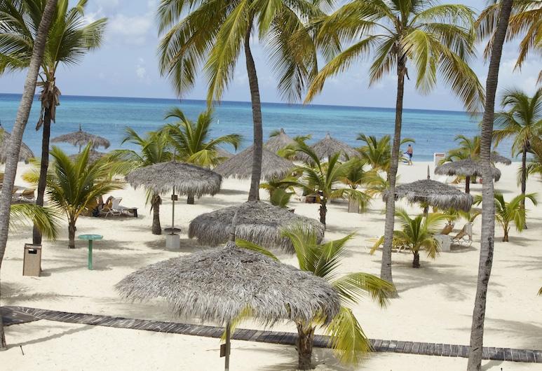 Manchebo Beach Resort and Spa, Oranjestad, Playa