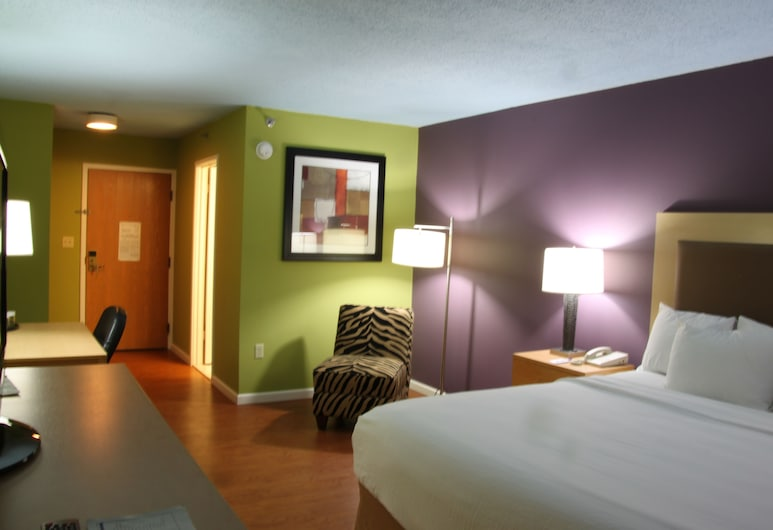 Trip Hotel Ithaca, Ithaca, Standardrum - 1 kingsize-säng, Gästrum