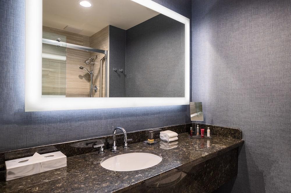 Kambarys verslo klientams, 1 labai didelė dvigulė lova, galimybė naudotis darbo zona - Vonios kambarys