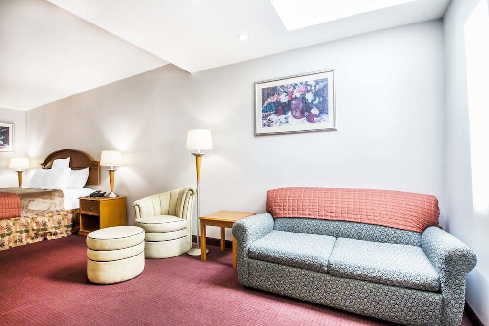 Suite, 1 king size krevet i kauč na rasklapanje, za nepušače - Dnevni boravak