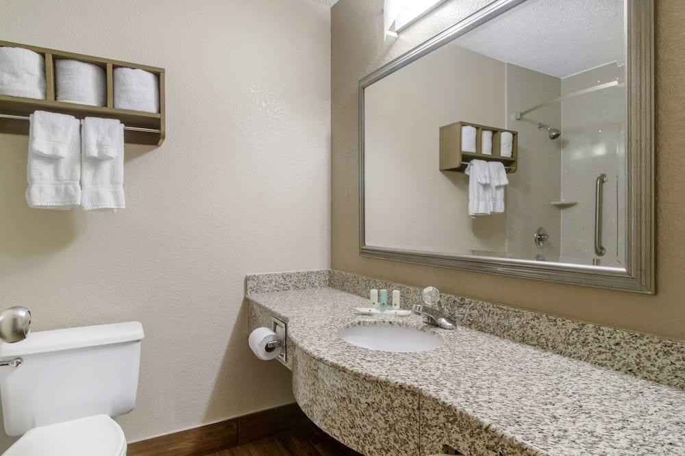 标准房, 1 张特大床 (Pet-Friendly) - 浴室