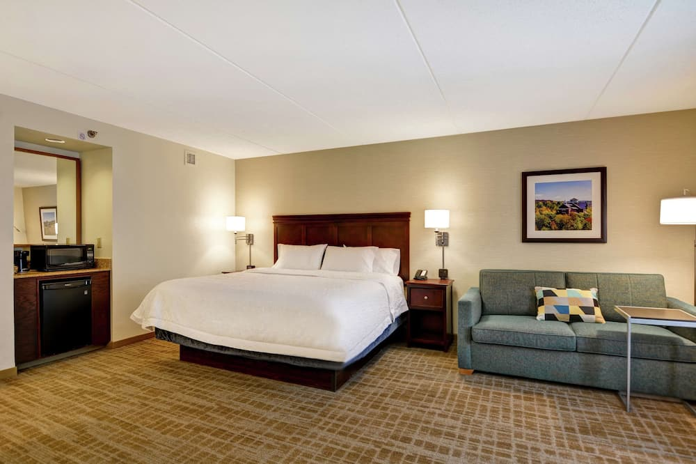 Suite, 1 King Bed, Fireplace - Living Area