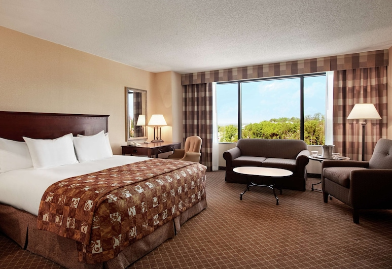 Hilton Greenville, Greenville, Deluxe soba, 1 king size krevet, kut zgrade, Soba za goste