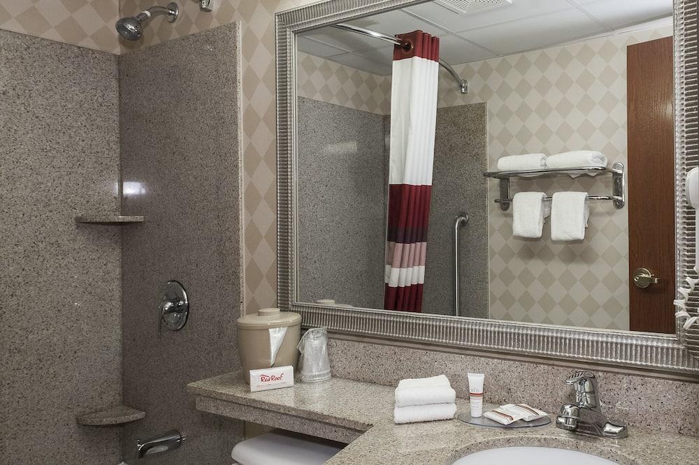 標準套房, 1 張特大雙人床和 1 張沙發床, 非吸煙房 - 浴室
