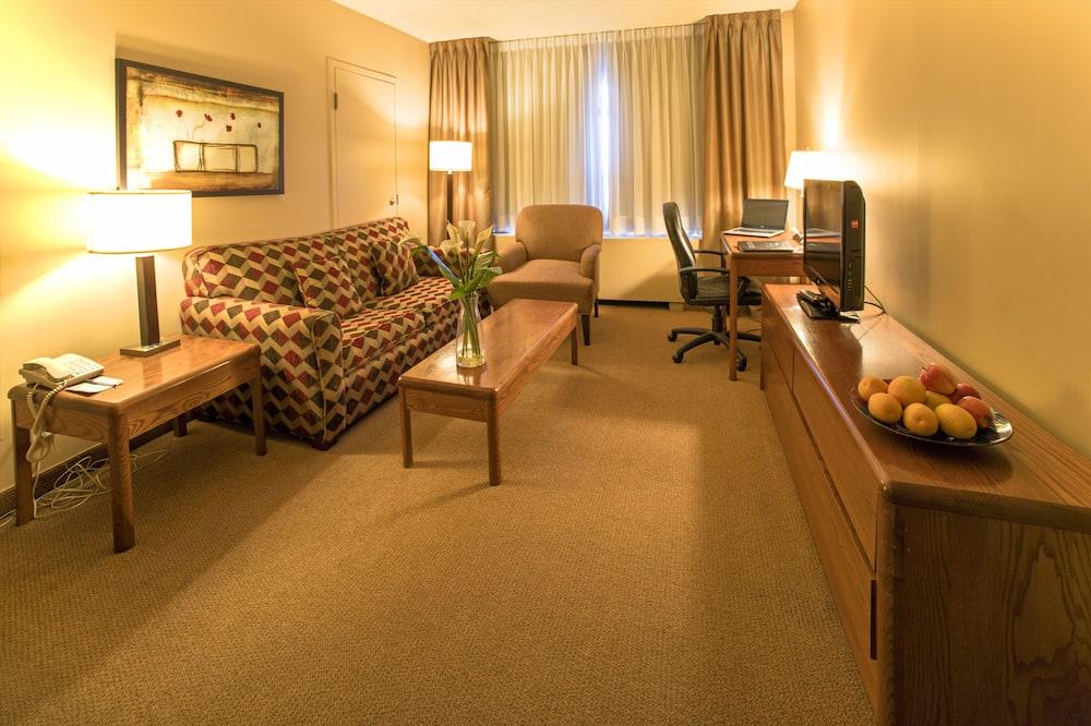 Luksusa numurs, 1 divguļamā karaļa gulta un dīvāngulta, nesmēķētājiem - Dzīvojamā istaba
