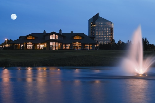 Grand traverse bay casino and resort cheat code hoyle casino