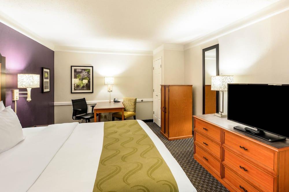 Standartinio tipo kambarys, 1 labai didelė dvigulė lova, Nerūkantiesiems - Svečių kambarys