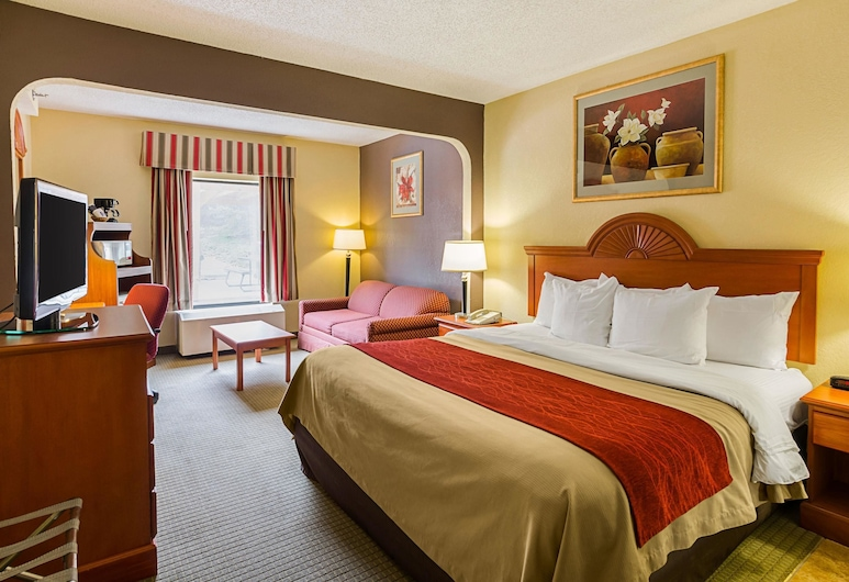 Quality Suites Altavista - Lynchburg South, Altavista, Guest Room