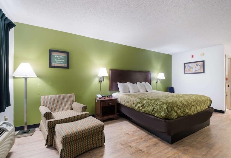 Econo Lodge Inn & Suites East, Knoxville, Standardna soba, 1 king size krevet, za nepušače, Soba za goste