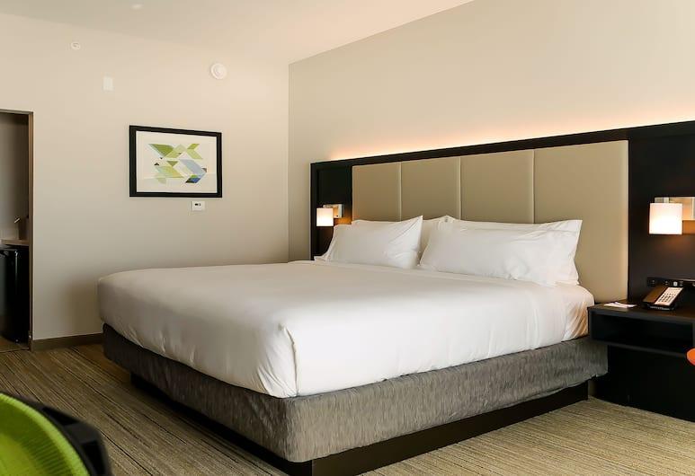 Holiday Inn Express & Suites Tampa East - Ybor City, Tampa, Standarta numurs, 1 divguļamā karaļa gulta, nesmēķētājiem (Leisure), Viesu numurs