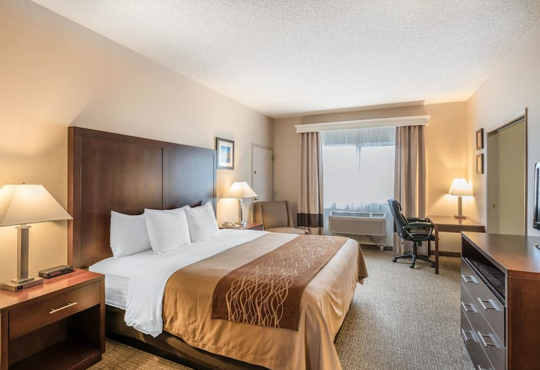 Comfort Inn & Suites Seattle, Seattle, Standard Room, 1 King Bed, Non Smoking, Guest Room