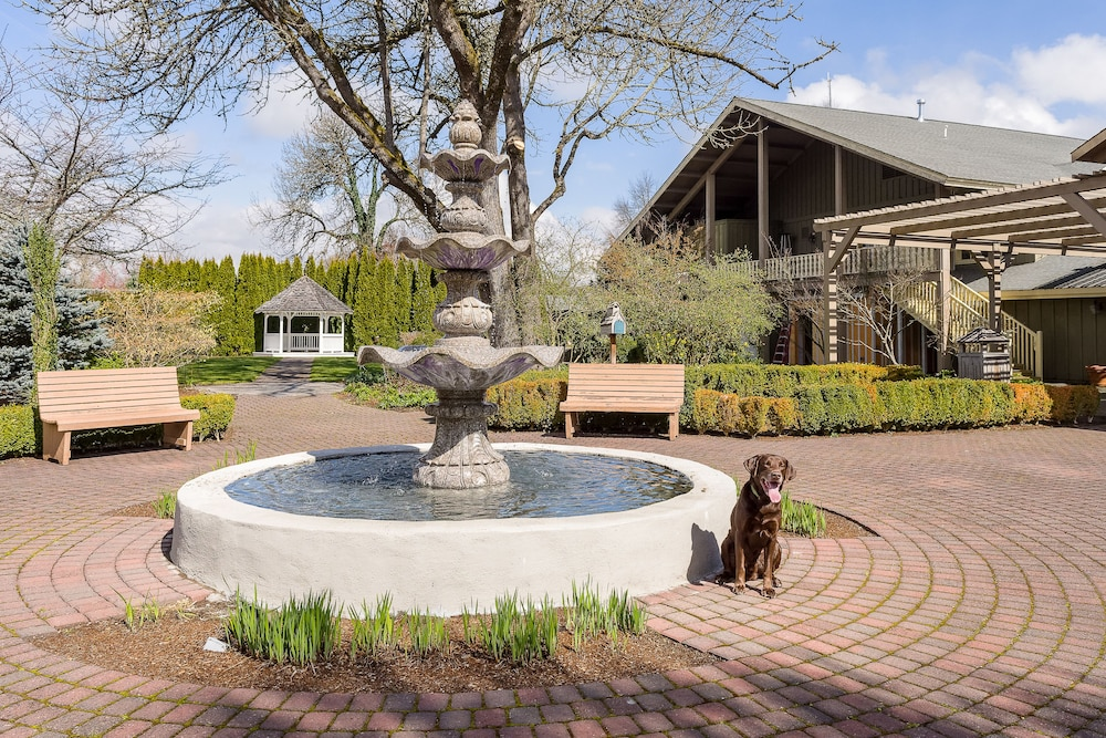 inn of ca cottage lincoln grove cottages reservations calistoga z hotel hotels ave