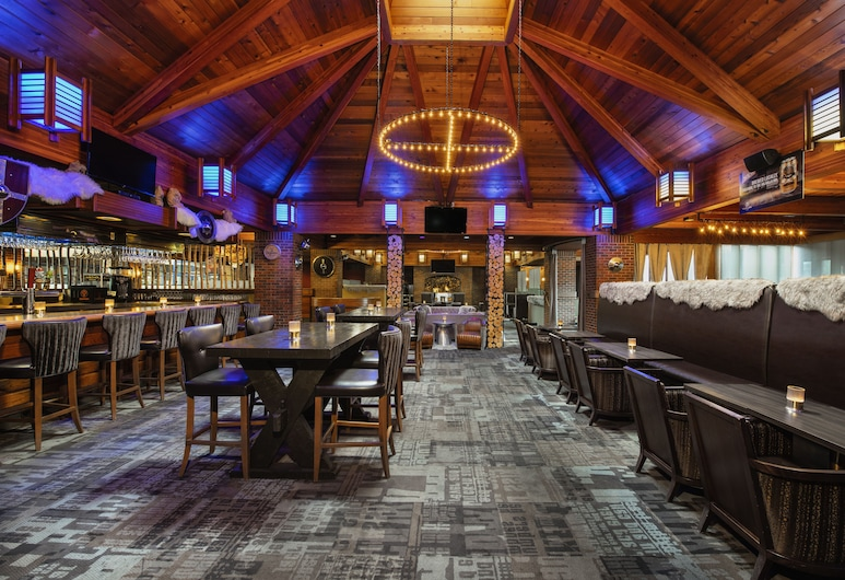 Valhalla Inn, Тандер-Бей, Лаундж готелю